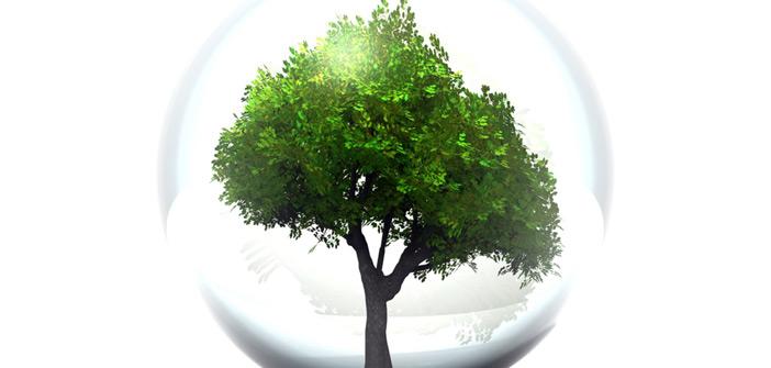 Respect de l'environnement - ECODEN
